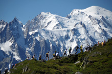 Marathon do Mont Blanc